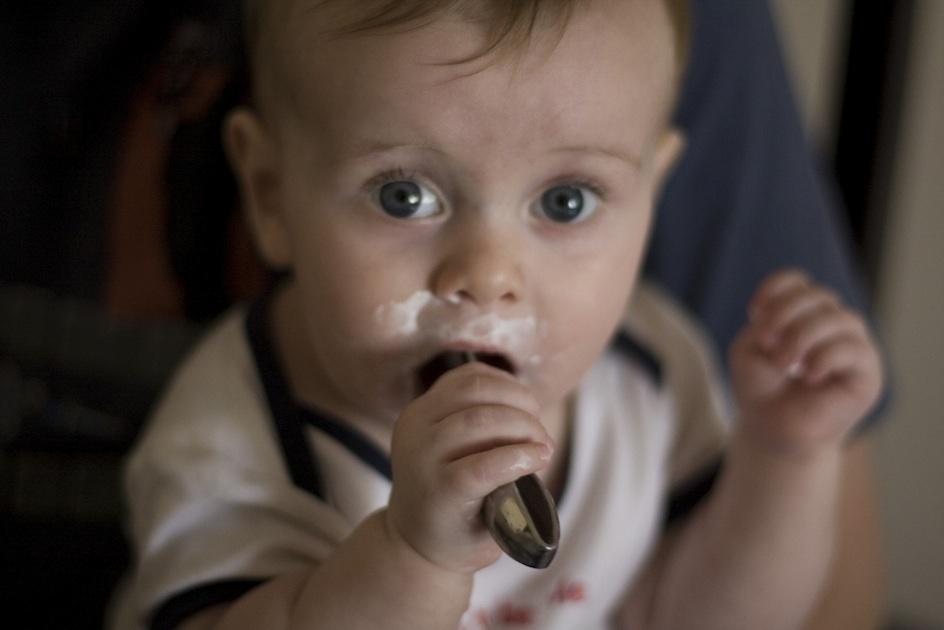 Babynahrung im Test