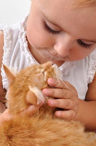 So ist Katzenhaltung mit Kids kein Problem