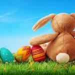 Osterhase und Eier   © panthermedia.net / egal